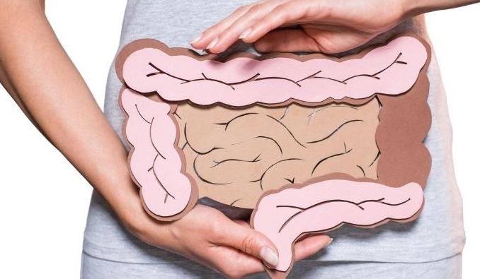Micorforana-F-Probiotica-Darm.jpg