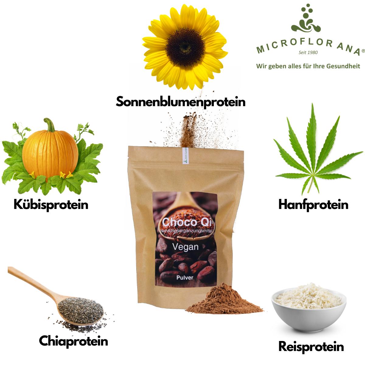 Proteine Choco Qi Vegan