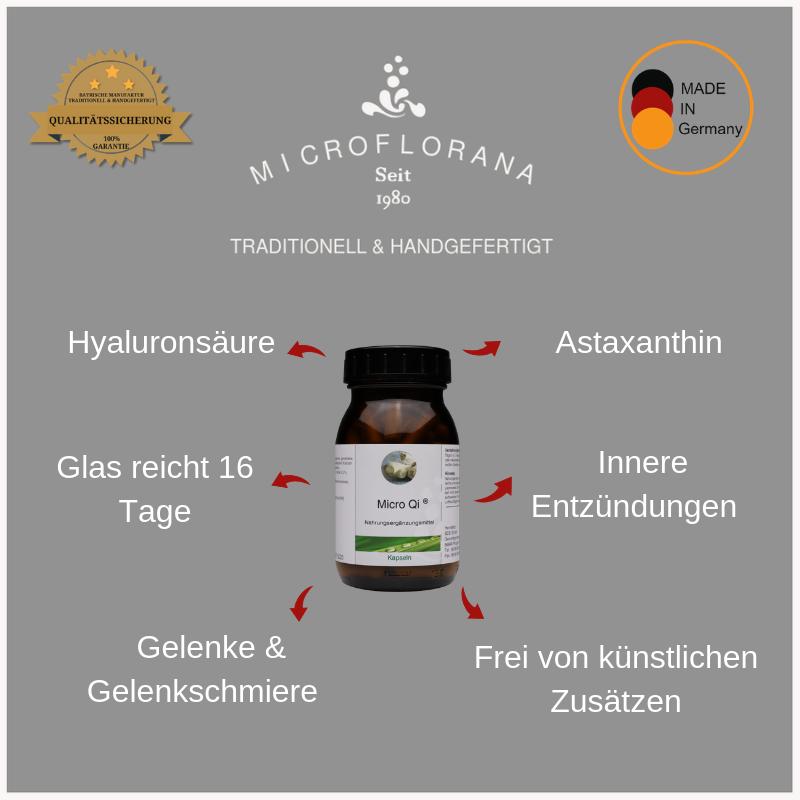 Zutaten-Micro-Qi-Kapseln