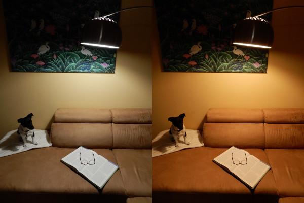 LED Lampe duolight